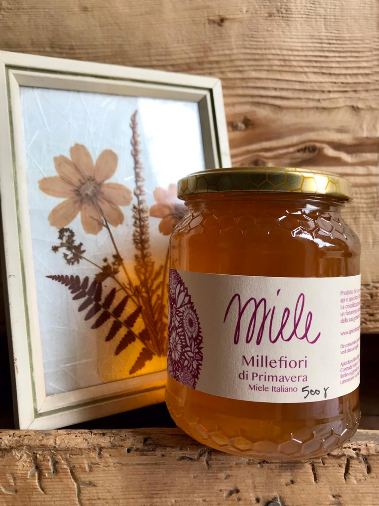 apicoltura-rilievo-miele-millefiori-primavera_ambientato